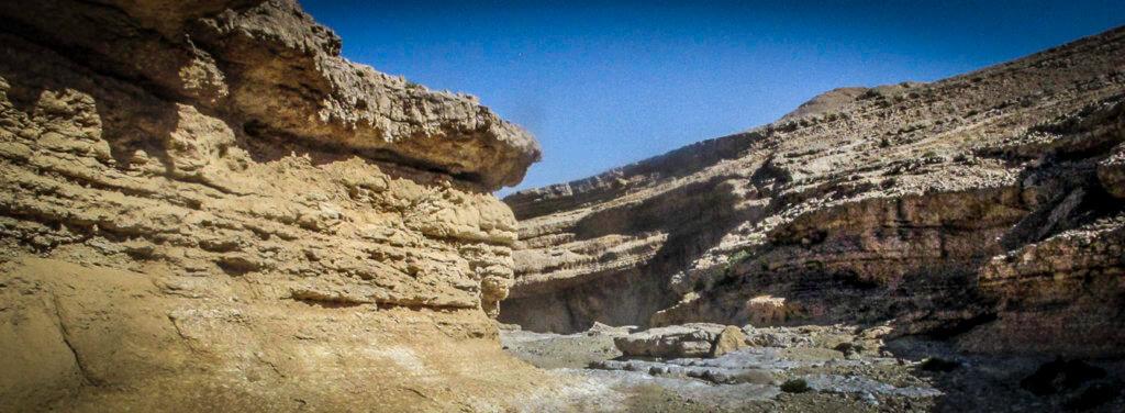 """Negev, Israel, (29°39'44"""" N 34°55'19"""" E) Fr, 26.2.2016, 9:44 Uhr: wieder ein WadiFoto:Bettina Anzenhofer"""