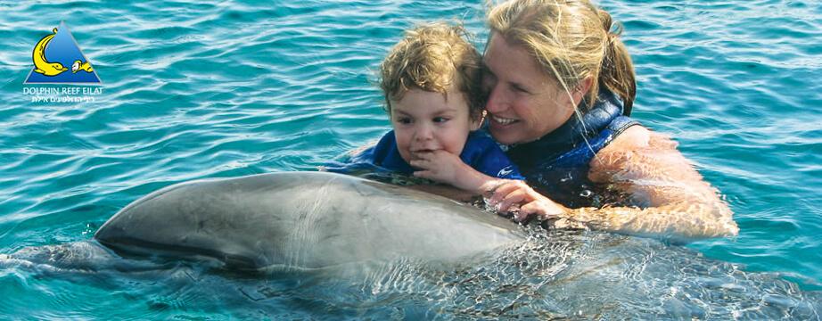 Baden und tauchen mit Delfinen